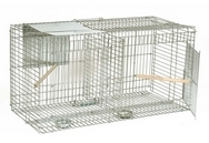 Larsen Live Catch Corvid Bird Trap